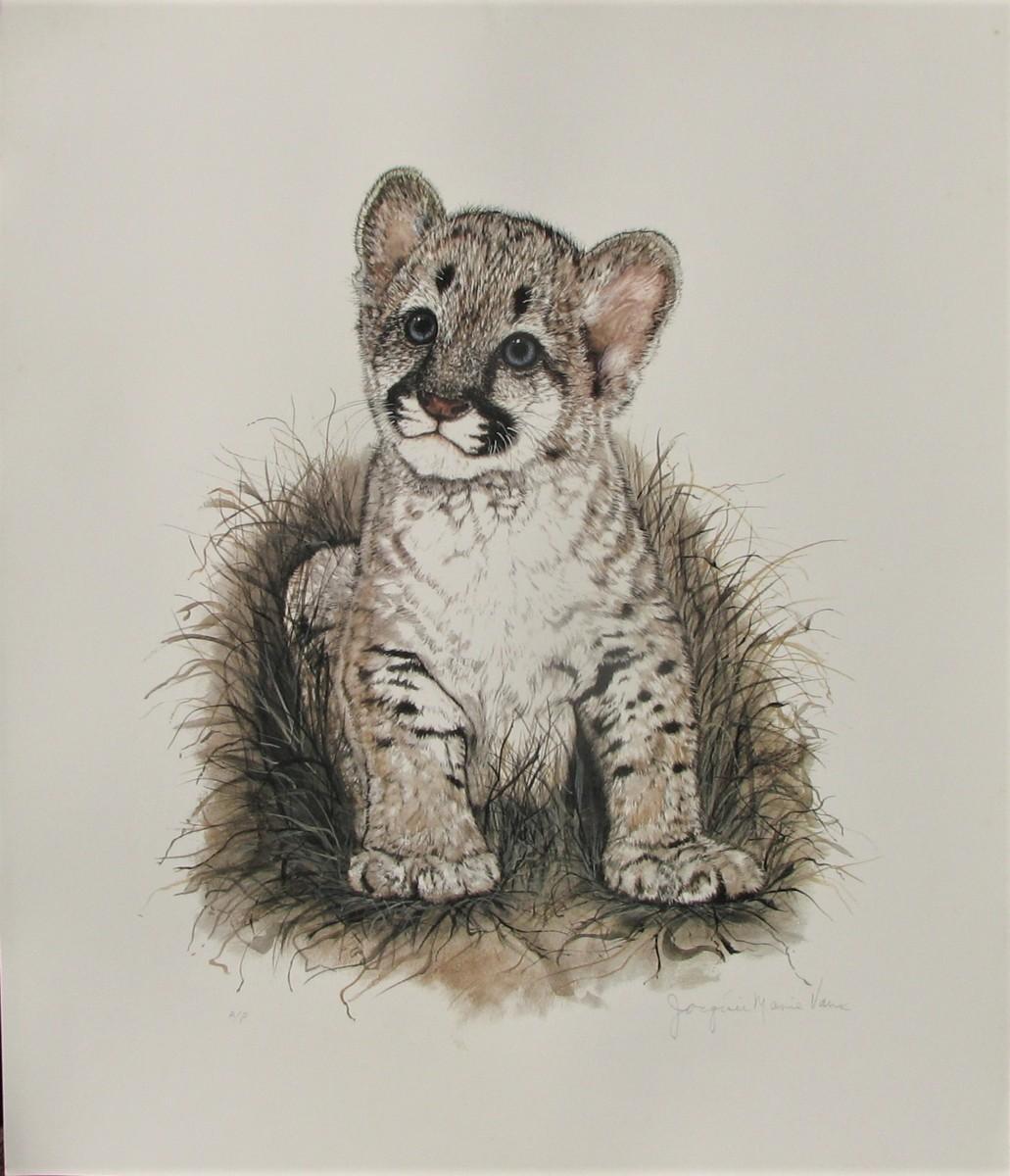 世界最高峰の動物作家,ジャッキーマリーヴォーグ「クーガーカブ」オフセットリト,コレクターさん必見!可愛さ爆発のスーパーヒット作品
