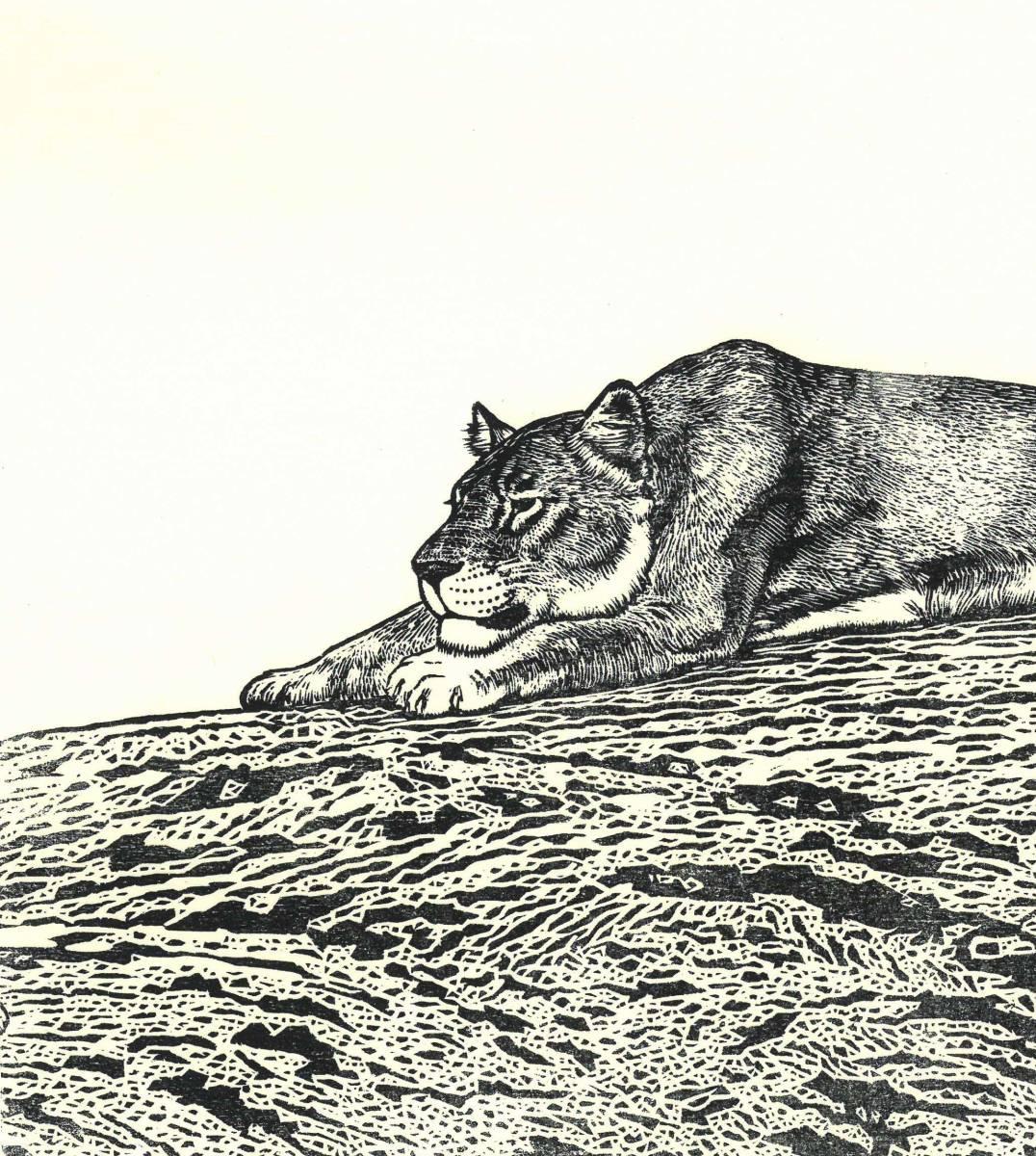 吉田遠志 (Yoshida Toshi) 木版画  ライオン#2 (Lion2)  最高峰の摺師の技をご堪能下さい!!  希少作品 残数枚のみ!!_画像6