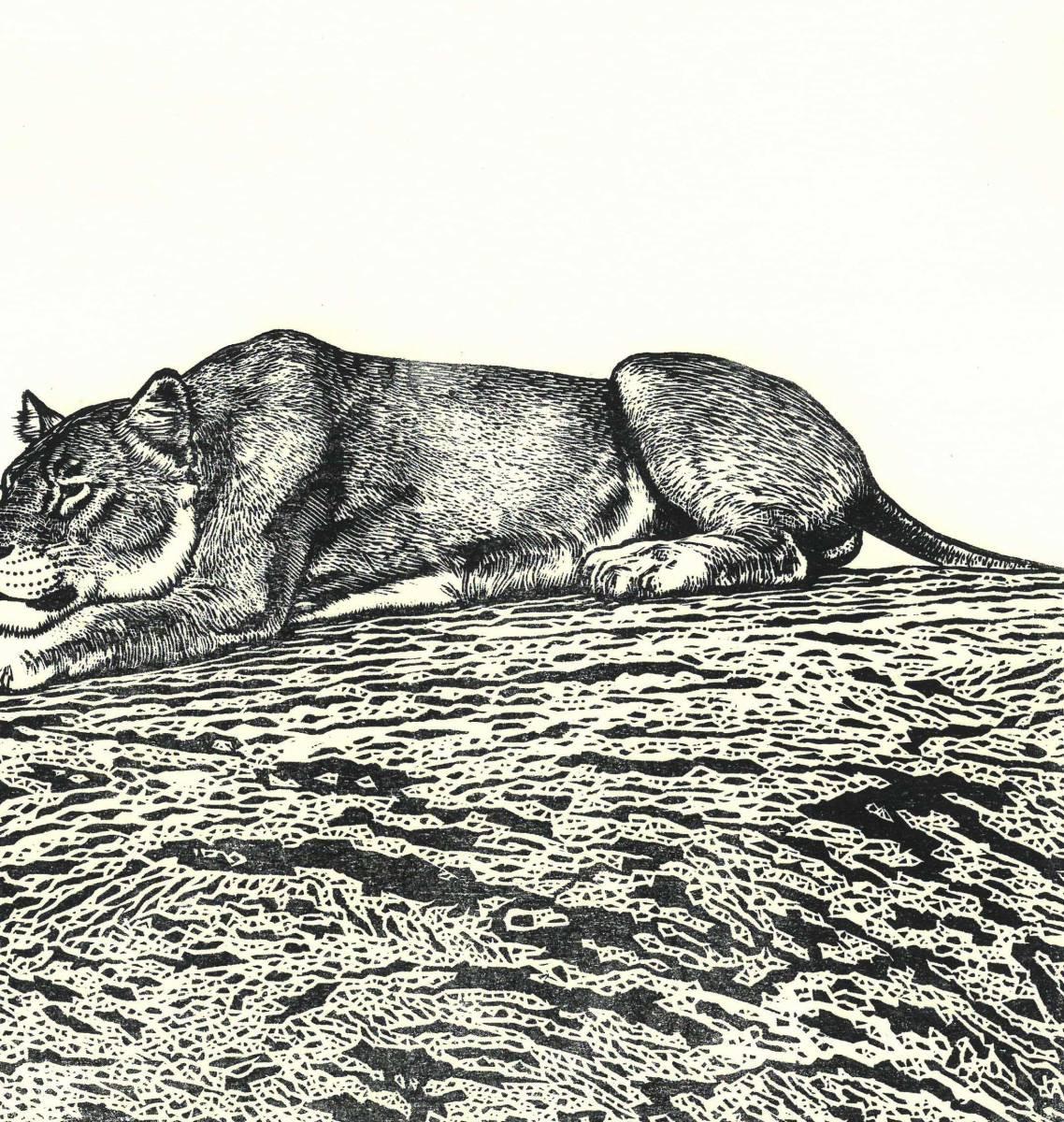 吉田遠志 (Yoshida Toshi) 木版画  ライオン#2 (Lion2)  最高峰の摺師の技をご堪能下さい!!  希少作品 残数枚のみ!!_画像8