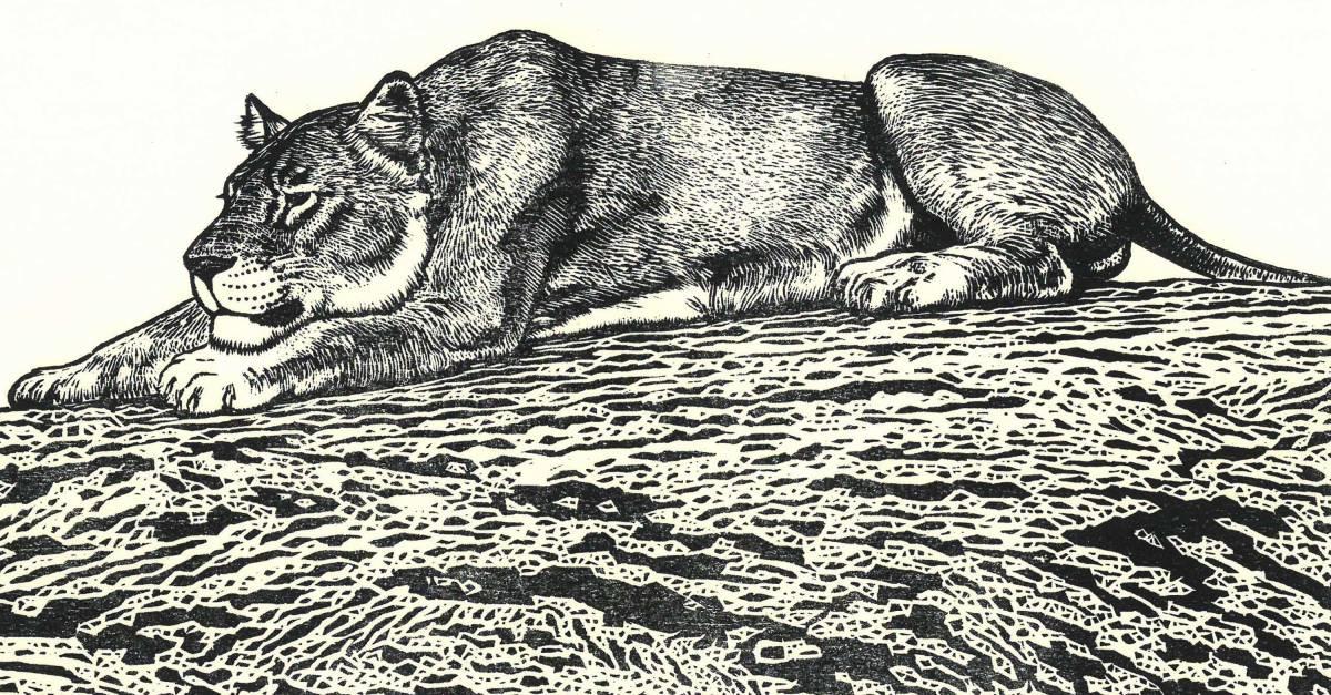 吉田遠志 (Yoshida Toshi) 木版画  ライオン#2 (Lion2)  最高峰の摺師の技をご堪能下さい!!  希少作品 残数枚のみ!!_画像10