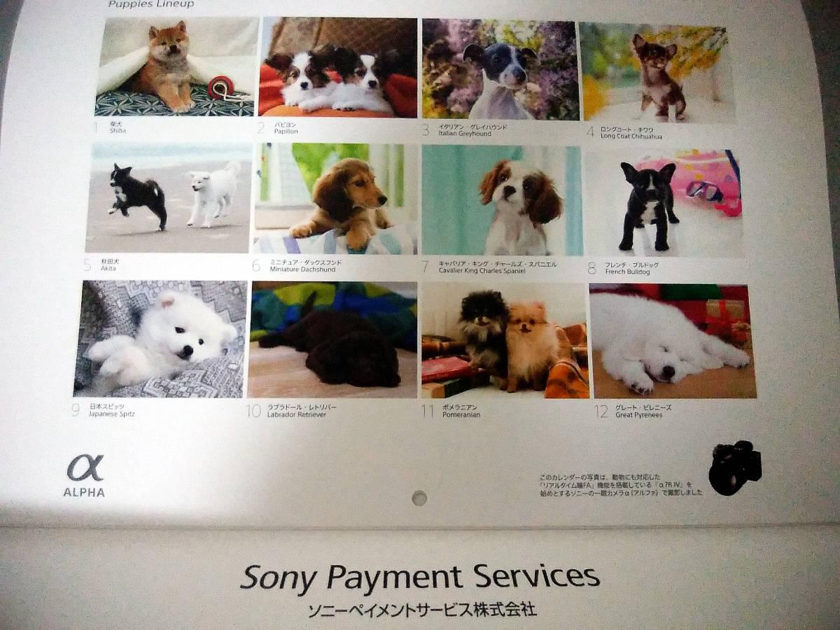 ◆世界の仔犬◆SONY ソニー◆非売品◆2021年壁掛けカレンダー◆毎年大人気◆送料無料★即決あり!_画像3