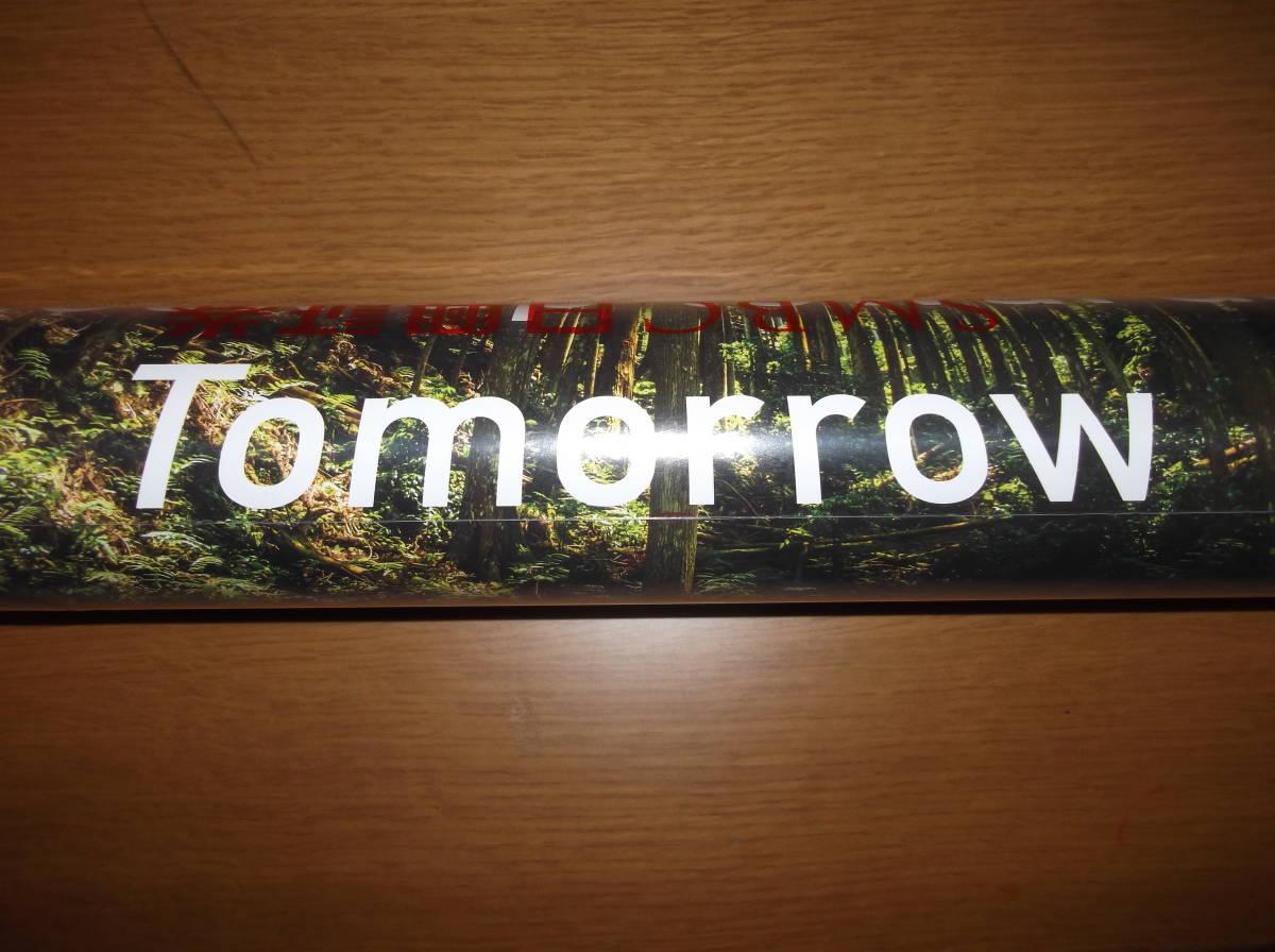 ★非売品★綺麗な風景写真★2021年 SMBC日興証券 壁掛けカレンダー ★★有効活用下さい★_画像6