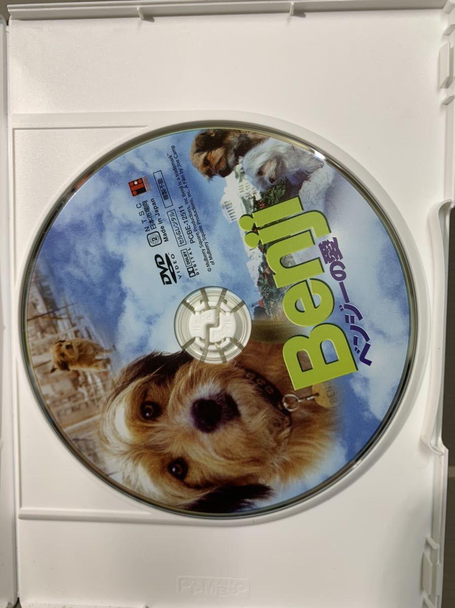 K596 DVD 【レア ベンジーの愛 Benji (字幕) ジョー・キャンプ監督 第2作目】 セル版_画像6