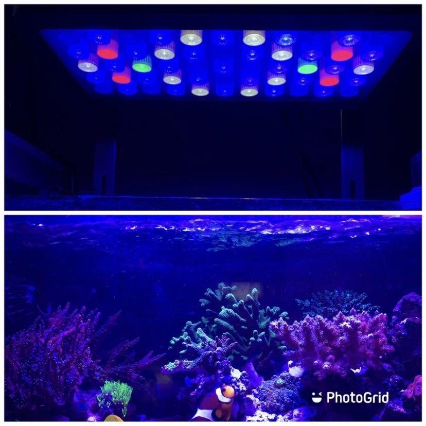 海水サンゴ水槽ライト プリズムレンズ165wアクアリウムLED 2個_画像6