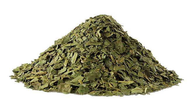 JAS有機 特選 桑茶(40g)無農薬オーガニックのマルベリーハーブ茶☆有機栽培☆島根県産☆シーズン最初の新茶の茶葉のみを詰めた特選品です♪_画像3