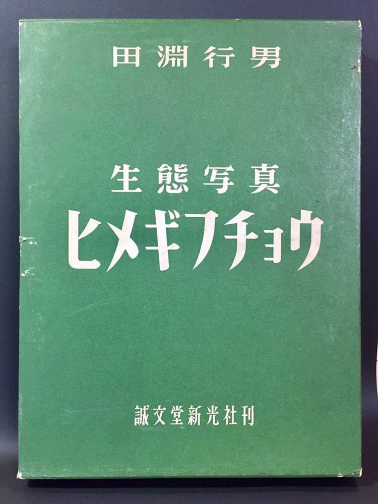 ヒメギフチョウ 生態写真 田淵行男 誠文堂新光社 _函、各角に少キズ