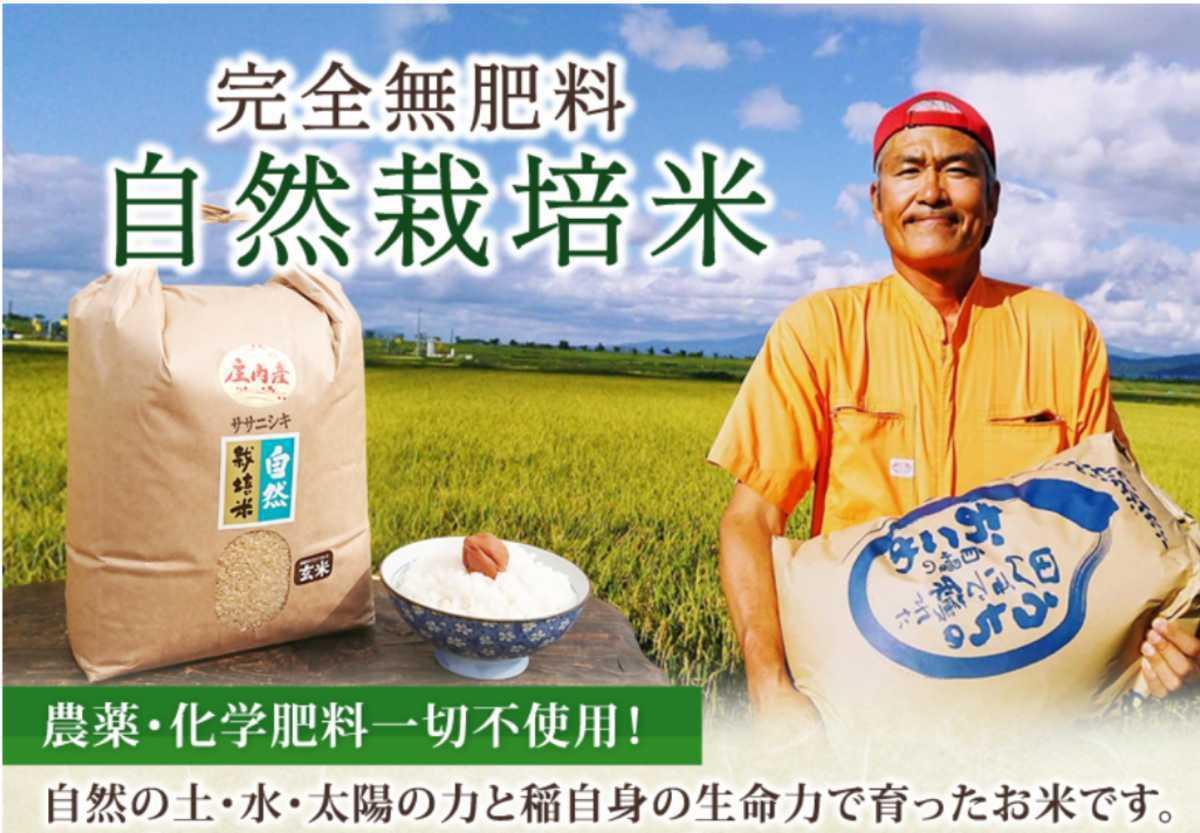 自然栽培 お米の旨みたっぷり 氷温熟成米 つや姫 令和2年産 山形県産 庄内米 玄米 10kg(5kg×2袋) 送料無料_画像3