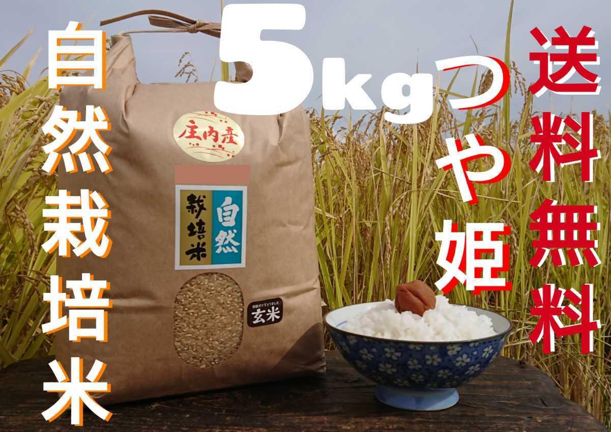 自然栽培 お米の旨みたっぷり 氷温熟成米つや姫 令和2年産 山形県産 庄内米 白米 5kg 送料無料_画像1