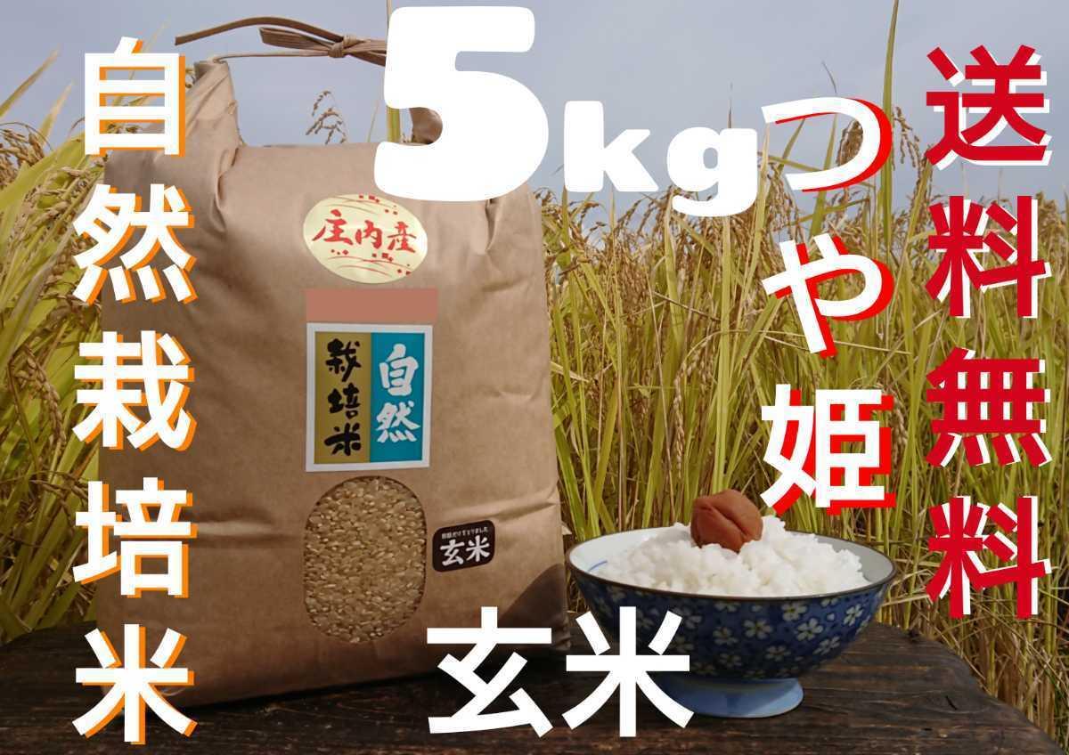 自然栽培 お米の旨みたっぷり 氷温熟成米 つや姫 令和2年産 山形県産 庄内米 玄米 5kg 送料無料_画像1