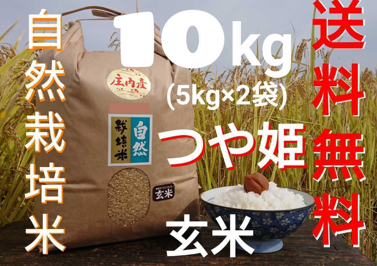 自然栽培 お米の旨みたっぷり 氷温熟成米 つや姫 令和2年産 山形県産 庄内米 玄米 10kg(5kg×2袋) 送料無料_画像1