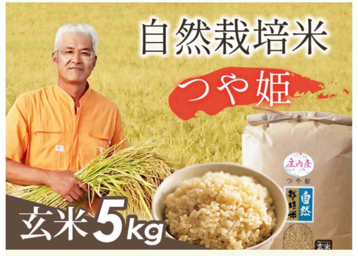 自然栽培 お米の旨みたっぷり 氷温熟成米 つや姫 令和2年産 山形県産 庄内米 玄米 5kg 送料無料_画像2