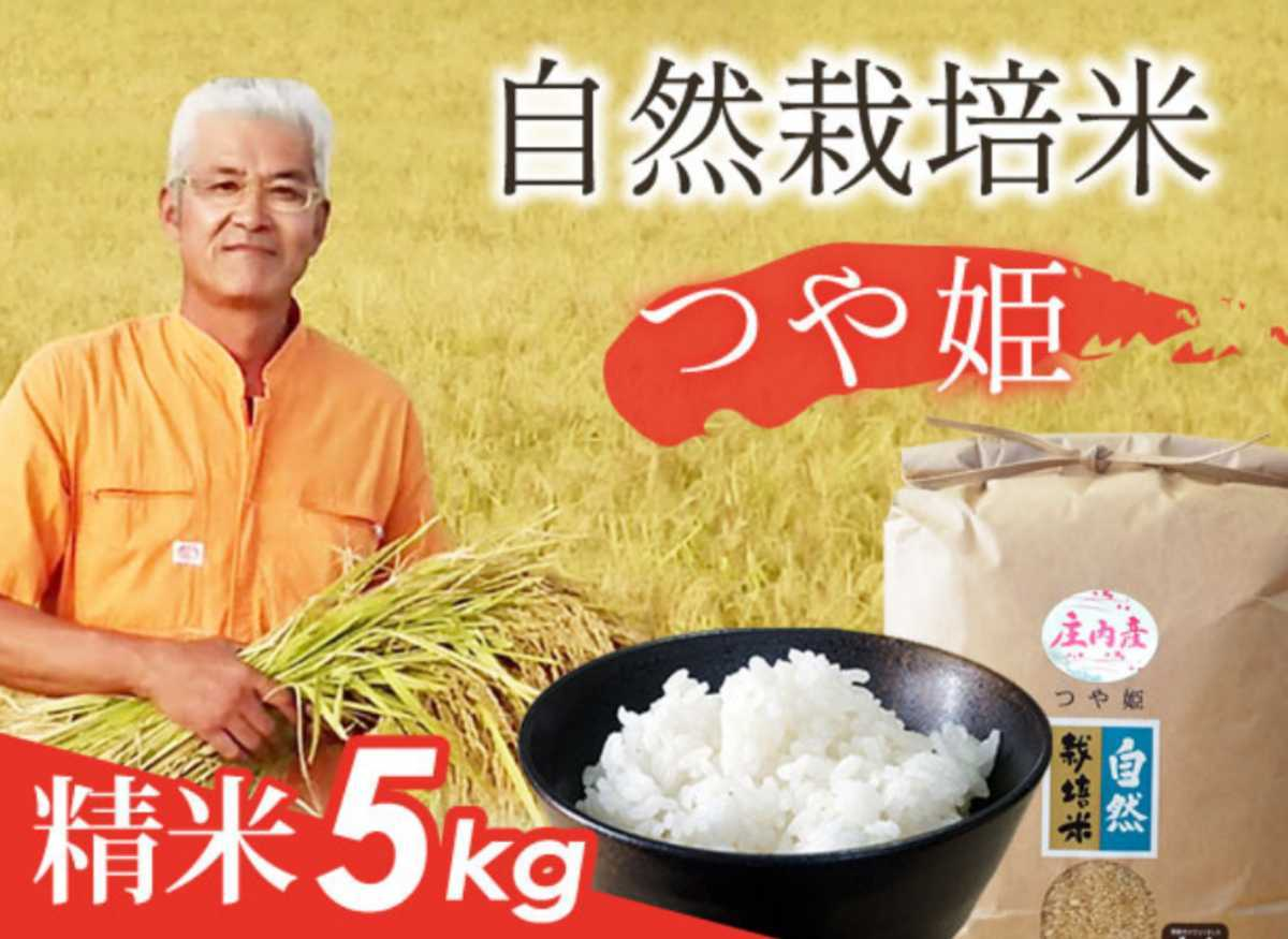 自然栽培 お米の旨みたっぷり 氷温熟成米つや姫 令和2年産 山形県産 庄内米 白米 5kg 送料無料_画像2
