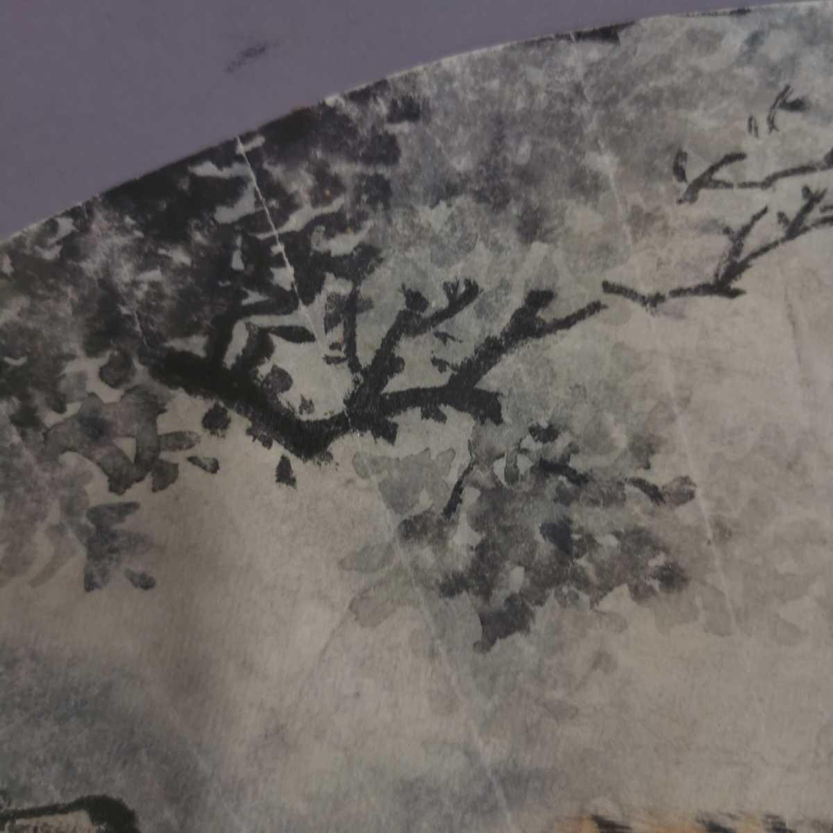 中国美術 扇面 掛軸 虎図 紙本 肉筆保証 掛け軸 時代物 在銘 中国古美術 唐物000307_画像6