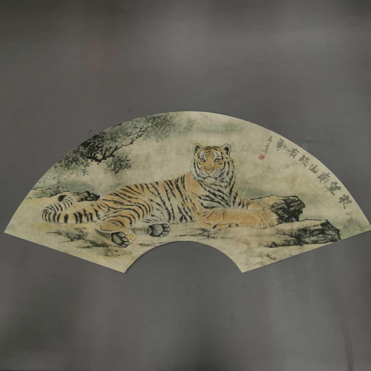 中国美術 扇面 掛軸 虎図 紙本 肉筆保証 掛け軸 時代物 在銘 中国古美術 唐物000307_画像1