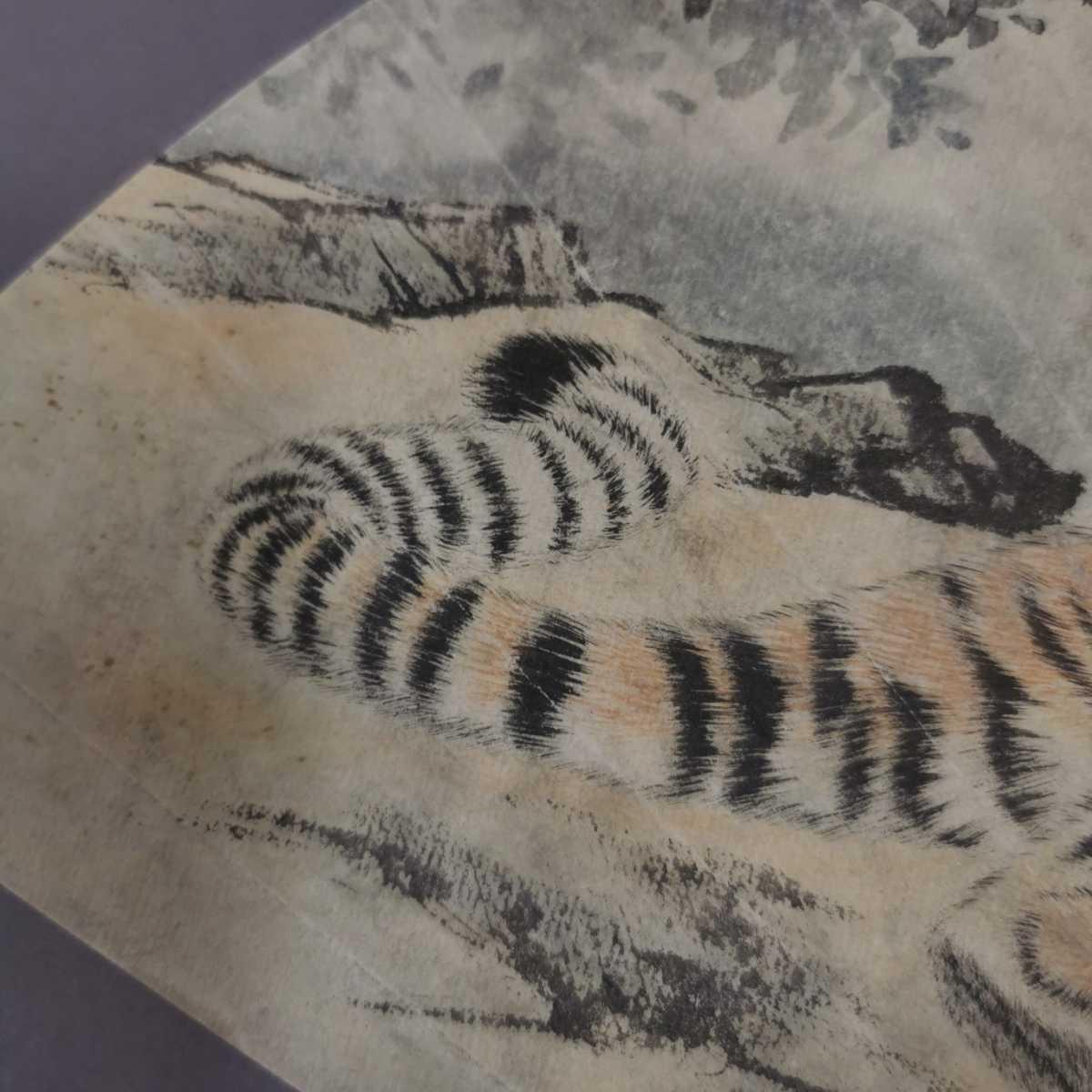 中国美術 扇面 掛軸 虎図 紙本 肉筆保証 掛け軸 時代物 在銘 中国古美術 唐物000307_画像5