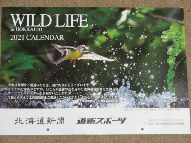【今年/2021年/令和3年/定形外送料300円】北海道新聞/道新スポーツ/壁掛けカレンダー /ワイルドライフ/WILD LIFE in HOKKAIDO/野生動物_画像1