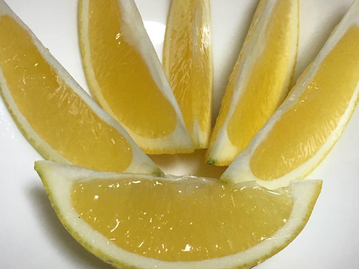 国産マイヤーレモン ストレート果汁720ml 3本◆◆◆全国送料無料◆◆◆_画像3