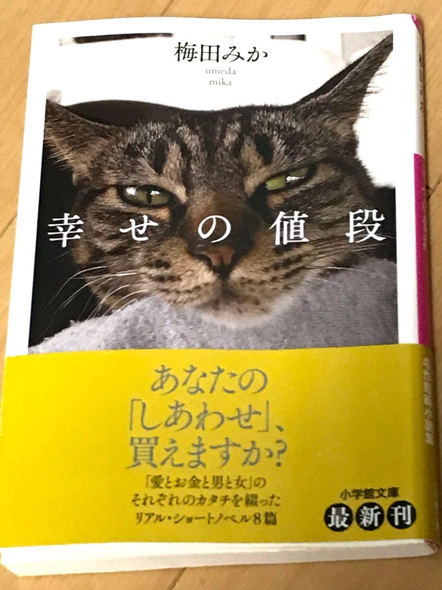 小説「幸せの値段  」