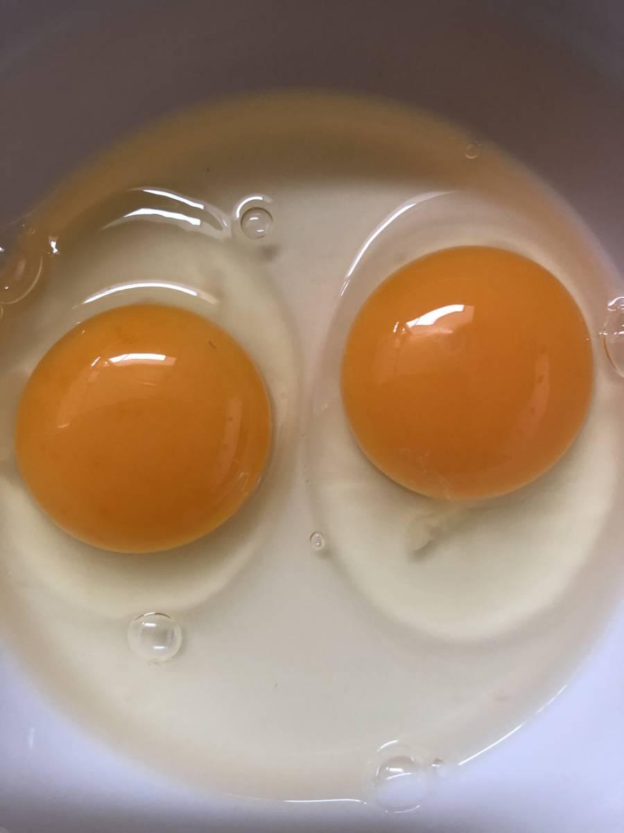 放し飼い鶏有精卵20個+割れ保障2個_画像3
