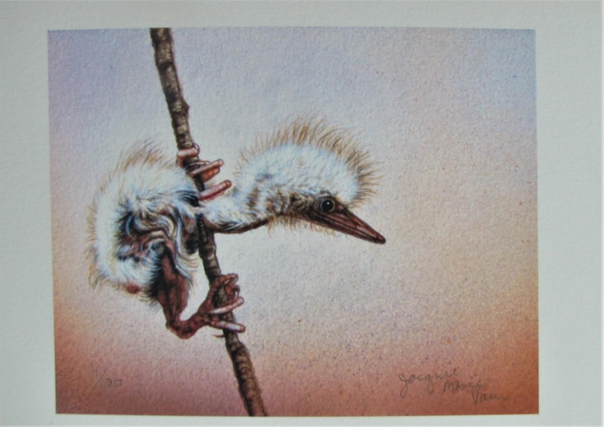 世界最高峰の動物作家,ジャッキーマリーヴォーグ「ビターンチック」ジクレー版画,サイン,エディションナンバー入り