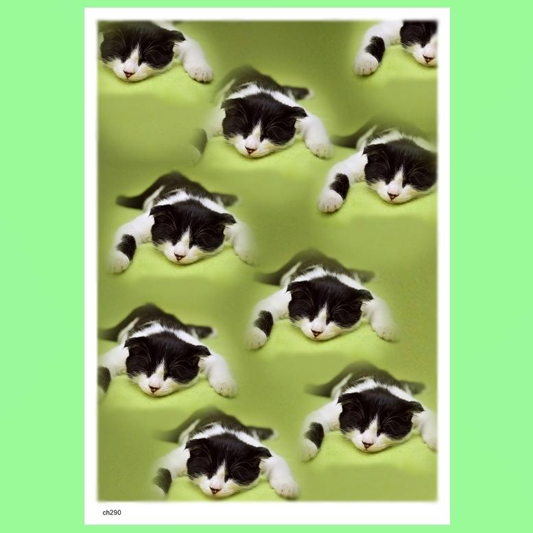 - にゃおんの恐怖 ch290 アートポスター A4プリント ねこ ネコ ねこあそび ごろにゃん 猫まね ニャンコ にゃんこ funny cat Art poster_画像2