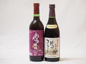 国産100%北海道おたる&長野県信州産ワイン2本セット(信州コンコード中口赤ワイン キャンベルアーリ辛口赤ワイン)720ml×2本_画像1