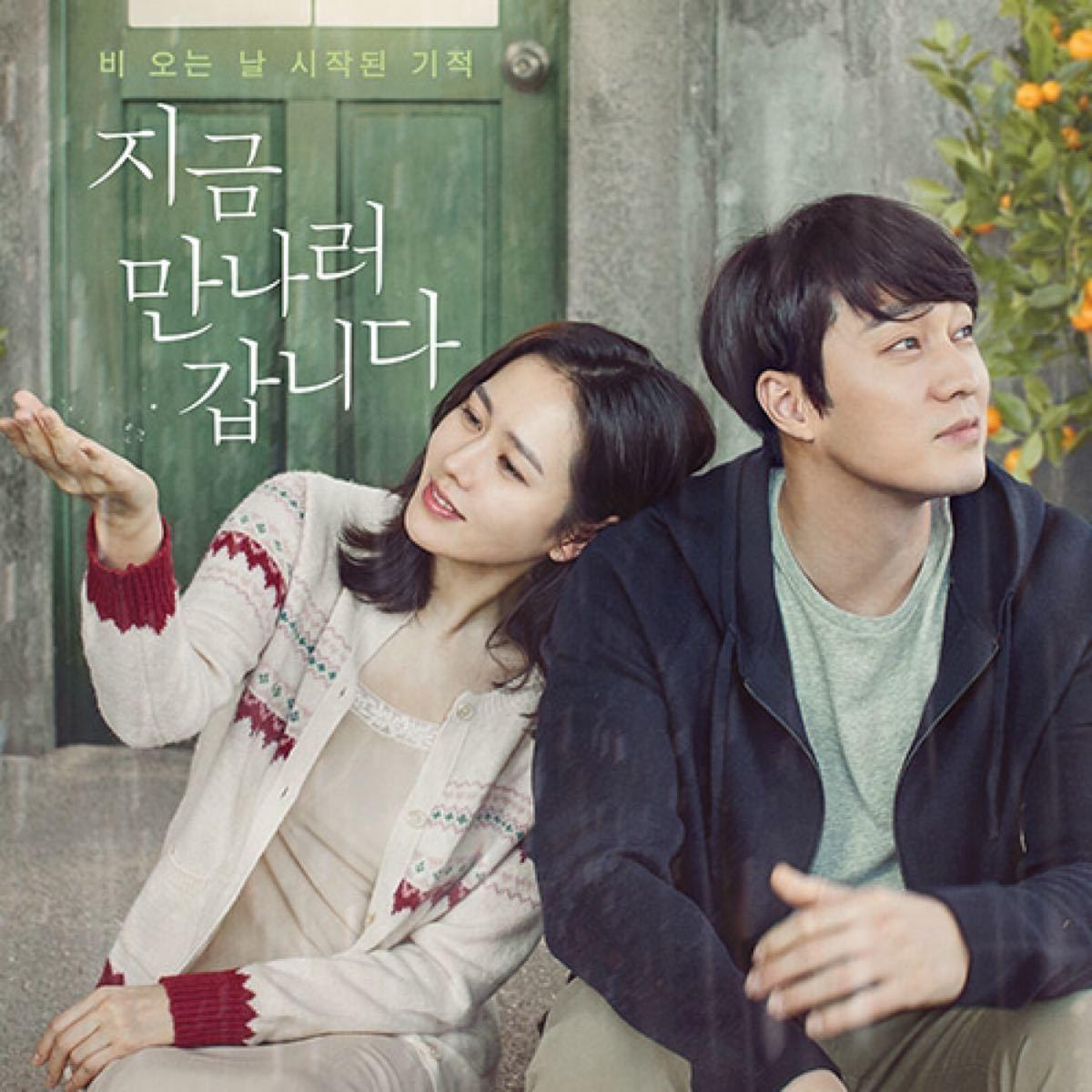 韓国映画  いま、会いにゆきます  ソン・イェジン  ソ・ジソプ  DVD 日本語吹替有り レーベル有り