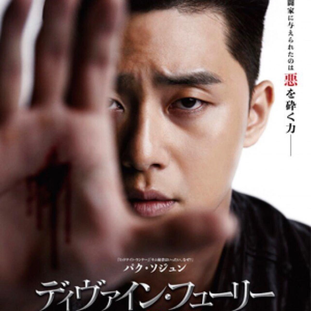 韓国映画 ディヴァインフューリー 使者  パク・ソジュン DVD レーベル有り