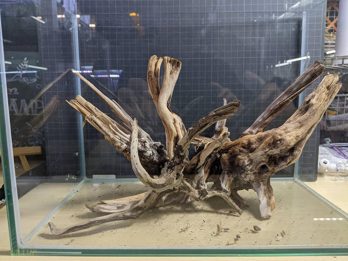 〓GRAMP〓 流木セット 45cm水槽いっぱいの量②_画像1
