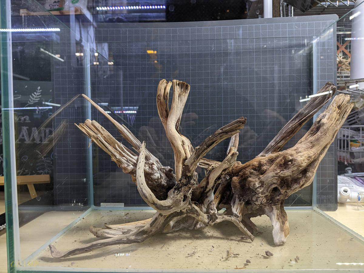 〓GRAMP〓 流木セット 45cm水槽いっぱいの量②_画像2