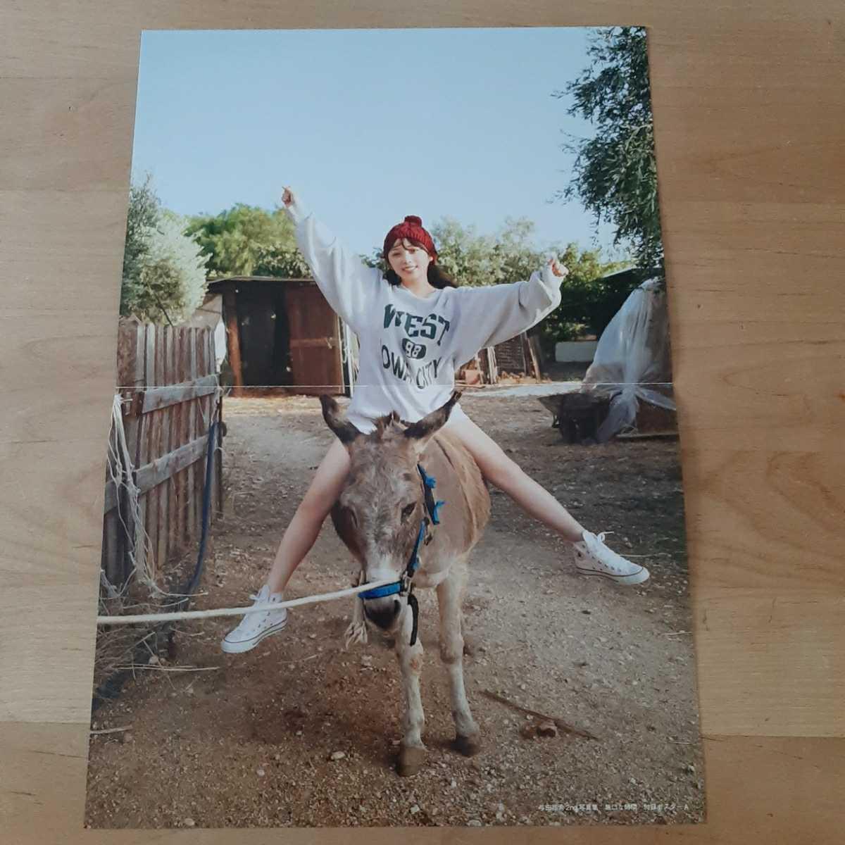 乃木坂46 与田祐希 2nd写真集 無口な時間 封入特典 ポスター 1枚 送料無料 ポスターのみ 匿名配送