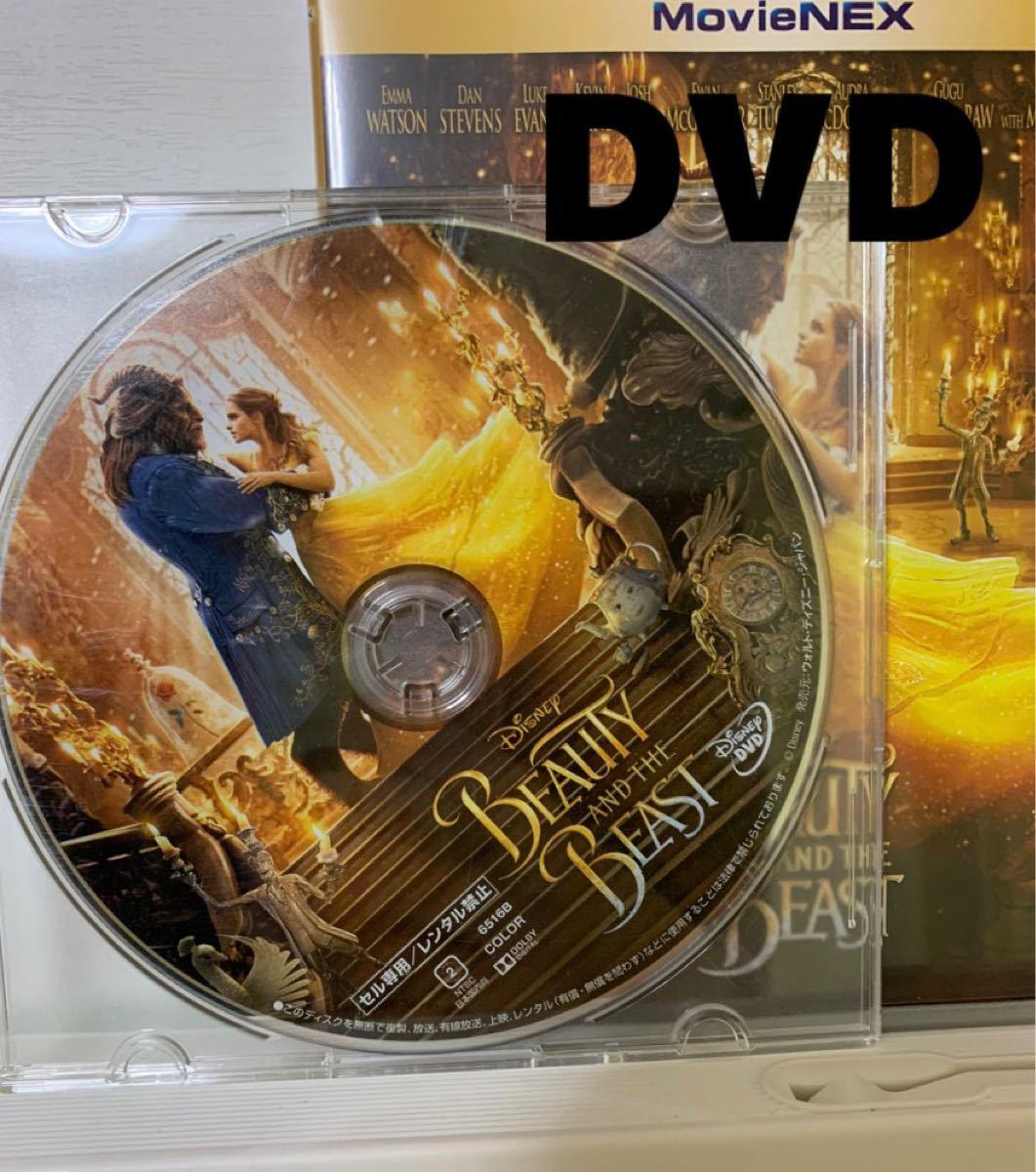 美女と野獣 DVD MovieNEX