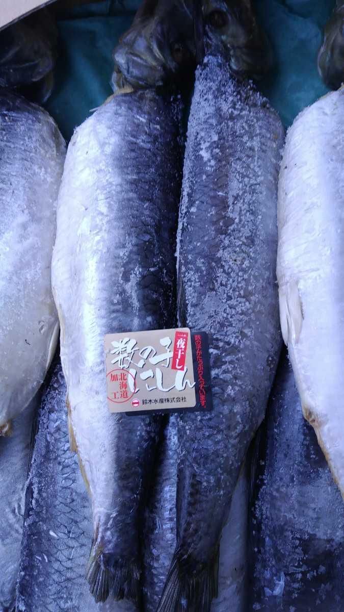 (魚)子持ちニシン30~35cm1本498円即決_画像1
