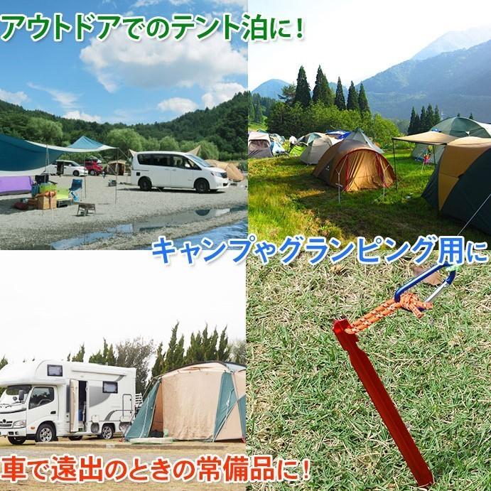 ペグ ロング 10本 まとめ 売り 軽量 アルミ テント タープ ブラック 黒