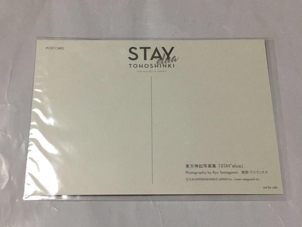 東方神起 ポストカード (STAY 'elua) 初回封入特典 非売品 ユノ チャンミン_画像2