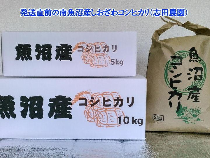 南魚沼産塩沢コシヒカリ無洗米(乾式)10kg(5kg×2)令和2年産_画像10