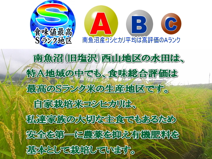 南魚沼産塩沢コシヒカリ無洗米(乾式)10kg(5kg×2)令和2年産_画像4