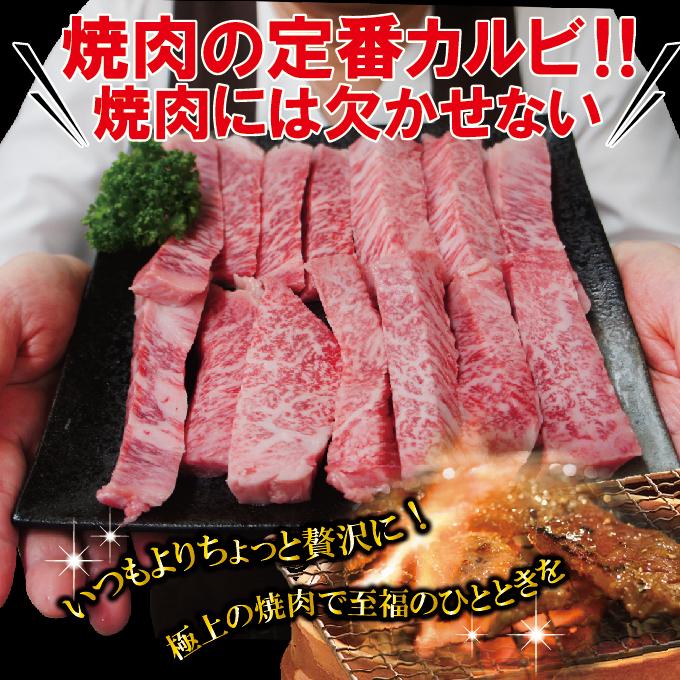 黒毛和牛A4~A5等級霜降りカルビ500g冷蔵【国産】【牛肉】【焼肉】_画像5