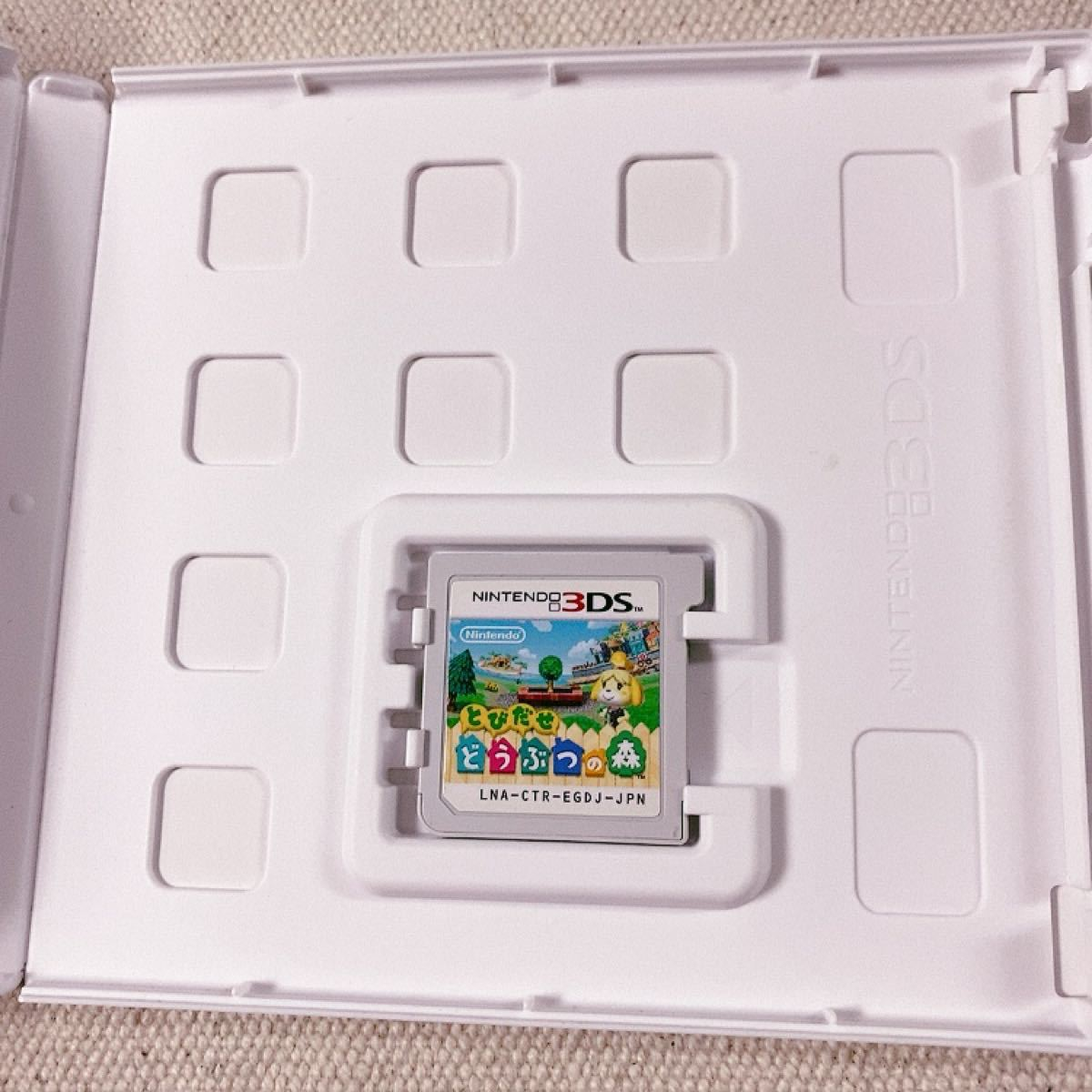 とびだせ どうぶつの森 Nintendo 3DS