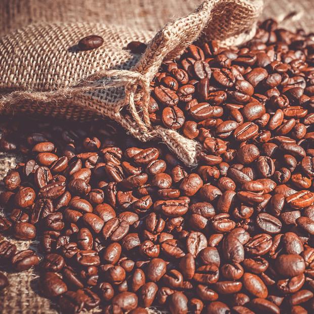 [コーヒー豆] 飲み比べお試しセット!!100gずつ計[200g]_画像3