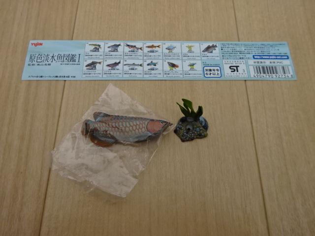 原色淡水魚図鑑 Ⅰ シークレット 台座彩色タイプ アジアアロワナ ユージン フィギュア 龍魚