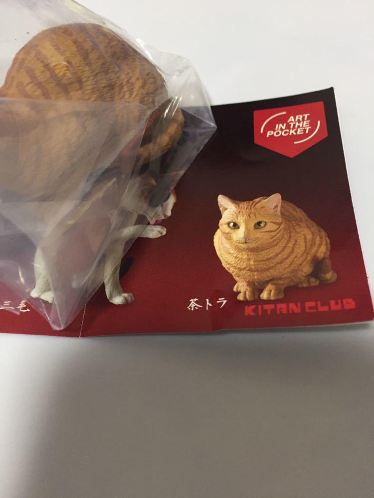 ガチャ 森口修の猫 フィギュアマスコット 新色 ART IN THE POCKET Cats 単品 茶トラ フィギュア 猫 送料200円 リアルな造形 ネコ