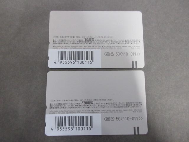 M1-393【未使用 テレカ】2枚セット MINAKO NARITA 成田美名子 テレホンカード 50度数_画像2