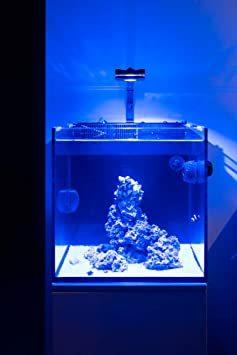 ピクシー 30 Lominie 水族館LEDライト、4チャンネル調光可能30Wフィッシュタンクライトピクシー30、海水魚とサンゴ_画像9