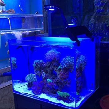 ピクシー 30 Lominie 水族館LEDライト、4チャンネル調光可能30Wフィッシュタンクライトピクシー30、海水魚とサンゴ_画像7
