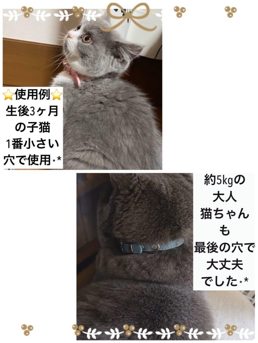 猫 犬 子猫 子犬 シンプル 首輪 ペット ねこ いぬ ウサギ うさぎ 小動物