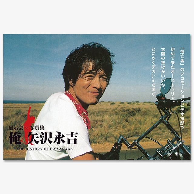 矢沢永吉 ポストカード セット_画像3