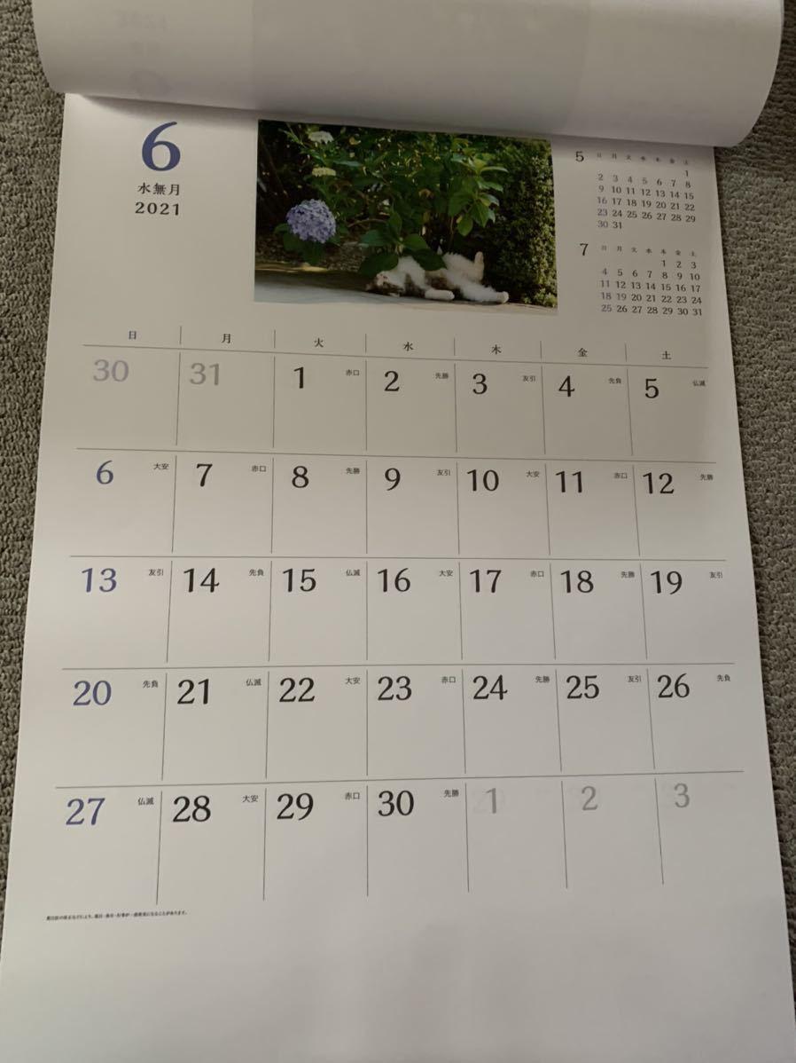 2021 壁掛けカレンダー 猫さんぽ カレンダー 猫_画像4