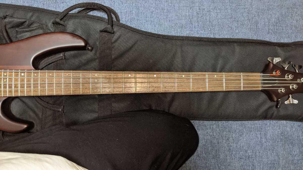 Grass Roots グラスルーツ G-D5-70 5弦  ベース スルーネック_画像3