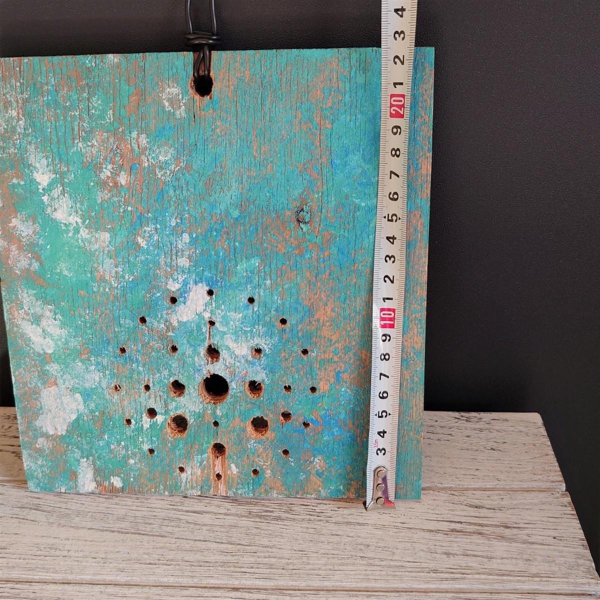 ~着生植物用ボードⅣ~ (W21.5cm×H22.5cm)ビカクシダ板付